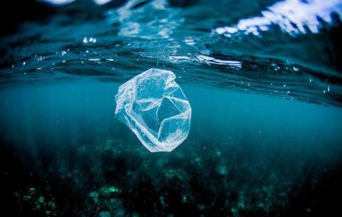 Plastics in the water