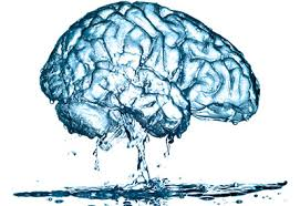 water on the brain,